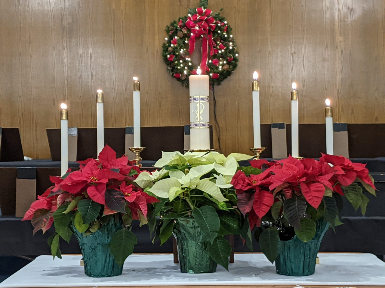 More Poinsettias on the Altar